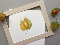 Physalis. Watercolor. Watercolour, My Arts, Flowers, Etsy, Pen And Wash, Watercolor Painting, Watercolor, Watercolors, Royal Icing Flowers