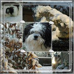 SNOW december 2012 color version