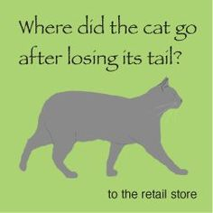 cat joke and illustration lunch note