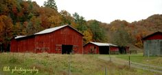 Barn in Sullivan Co ~ Northeast Tennessee by lkb photography East Tennessee, Old Barns, Cool Countries, Rustic Charm, Old And New, Outdoor Living, Shed, Outdoor Structures, Country