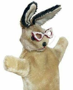 Caption Kangaroo Mr. BUNNY