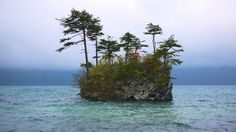 Islet on Lake Towada, Japan. I left part of me there. One day I'll go back find myself...