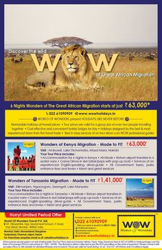 WOW Africa Media Campaign, New Zealand, How To Memorize Things, Europe, African, Canada, Australia, Tours, Australia Beach