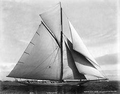 Vigilant Racing 1893