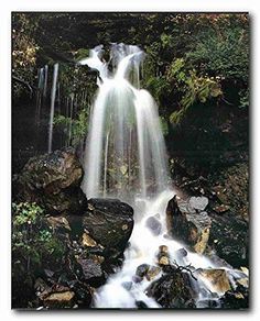 Simply Fabulous! This beautiful wall poster of tropical forest scenery will bring interest to any space. This waterfall and stream in the Tropical forest view creates a feeling of peace and reflects nature in full bloom which bring a touch of beauty to any home décor style and goes well with any decor. Hurry up and grab this wonderful wall poster for its durable quality and high degree of color accuracy.