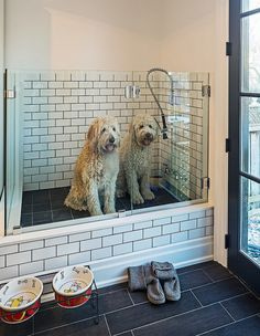 What an awesome idea 🙂 Houzz – Home Design, Decorating and Remodeli… Dog shower! What an awesome idea :] Houzz – Home Design, Decorating and Remodeling Ideas and Inspiration, Kitchen and Bathroom Design Veranda Design, Dog Rooms, Rooms For Dogs, House Rooms, Dog Shower, Bath Shower, Shower Floor, Tile Floor, Shower Box
