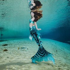 Beautiful underwater real mermaid! Look at that tail!! see this Instagram photo by @weekiwacheesprings • 1,089 likes