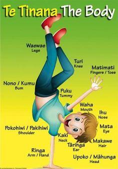 "Maori Resources – Tagged ""Te Reo"" – Page 2 – Blackboard Jungle School Resources, Learning Resources, Kids Learning, Maori Songs, Waitangi Day, New Zealand Tattoo, Class Displays, Maori Art, Classroom Language"