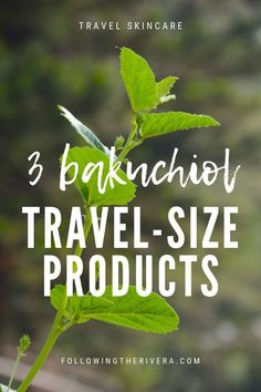 Bakuchiol products you can bring in your travel luggage Travel Advice, Travel Tips, Travel Hacks, Travel Guides, Travel Destinations, Fun Travel, Travel Gadgets, Family Travel, Travel Luggage