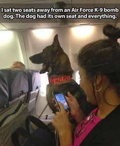 16 Times Dogs Attended Flights And Were The Best Passengers Ever - I Can Has Cheezburger? Military Working Dogs, Military Dogs, Police Dogs, Image Blog, War Dogs, Belgian Malinois, Dog Memes, Service Dogs, Found Out