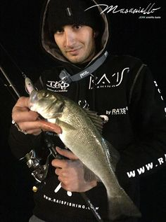 Masaniello catches a good seabass