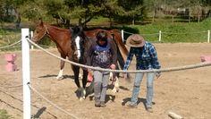 Aprender a apanhar um cavalo em liberdade e guiá-lo por um percurso. Praticando Atenção e Assertividade com um dos nossos clientes mais jovens (10anos).