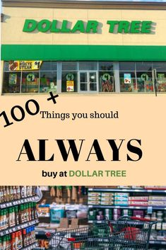 Dollar Tree is just one of those places that you can't help going in to. That is whether you are a Frugal person or not! You can ALWAYS buy something at Dollar Tree for a great deal! Dollar Store Crafts, Diy Crafts To Sell, Dollar Stores, Emergency Food Storage, Emergency Preparedness, Paper Gift Bags, Paper Gifts, Dollar Tree Gift Bags, Survival Life Hacks