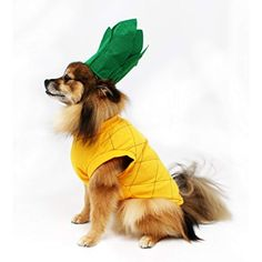 Pineapple Dog Costume by Midlee (Large)     Be sure to check out 7d455f9093fb