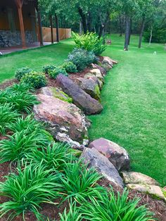 Check out this beautiful border with tall grass and rocks....
