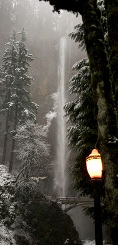 Lamplit, dusky winter scene at Multnomah Falls ~ Columbia River Gorge, Oregon (30 mi. east of Portland) • photo: Synapped on Flickr