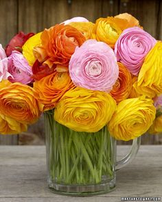 a rainbow floral arrangement of ranunculus