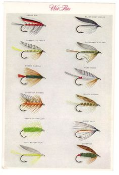 Set Trout Flies Fly Fishing Wet Flies Two Prints 02 by Mainetrader, $15.00