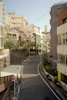 Beautiful Tokyo streets. I can't wait until I live here.