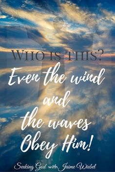 """✟♥  ✞  ♥✟ And they came to Jesus and woke Him, saying, """"Save us, Lord; we are perishing!"""" * He said to them, """"Why are you afraid, you men of little faith?"""" Then He got up and rebuked the winds and the sea, and it became perfectly calm. *** The men were amazed, and said, """"What manner of Man is this, that even the winds and the sea obey Him! """"  {Matthew 8:25-27}  ✟  ♥✞♥  ✟"""