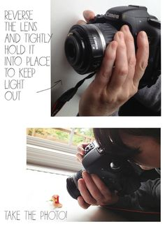 alisaburke: a peek into snap shot delight & a giveaway! how to make a macro with a regular lense