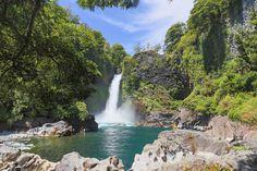 A Reserva Biológica Huilo Huilo, na selva da Patagônia Chilena (860 Km ao sul de Santiago), já é conhecida pelas...