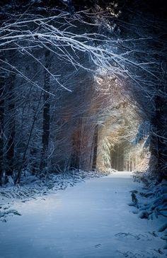~Winter Wonderland~