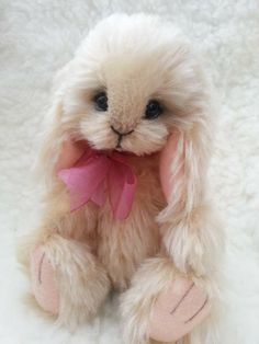 baby bunny by Apollos