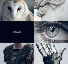 Athenas bird, grey eyes, armor, and statue