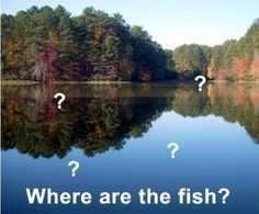 Finding fish is one of the biggest problems anglers have. It doesn't have to be such a huge issue, though, because I've learned over the years that there are certain things to look out for when yo...