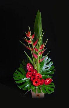 Cool tropical arrangement with gerbera daisies, anthurium, and heliconia Contemporary Flower Arrangements, Tropical Flower Arrangements, Creative Flower Arrangements, Flower Arrangement Designs, Ikebana Flower Arrangement, Church Flower Arrangements, Beautiful Flower Arrangements, Flower Centerpieces, Flower Decorations