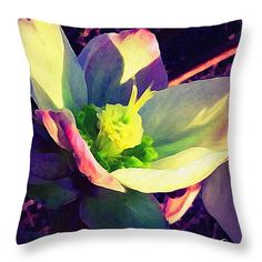 """Painted Hellebores in Sunlight 16"""" x 16"""" Throw Pillow by Anna Porter.  Multiple sizes available."""