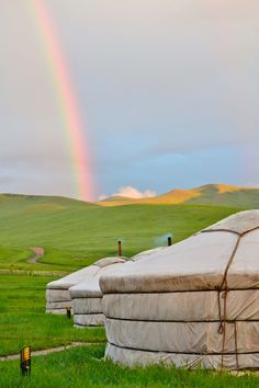 Hustai National Park, Mongolia photo by Lydia Schrandt  / Frommer's Cover Photo Contest 2012 http://frm.rs/ejDojq