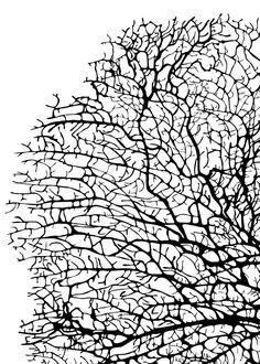 WHITE & BLACK Coral Printable Art 5x7 DIY by CleverPrintables