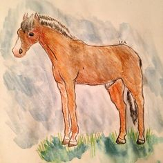 A horse named Benji that i drew for someone on Instagram :) -by Lauren A