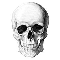 'Skull' Sticker by Ghøst . Pink Tattoo Ink, Tattoo Ink Colors, Scull Drawing, Homemade Tattoo Ink, Drawings Pinterest, Pillow Drawing, Make Tattoo, Inked Men, Chiaroscuro