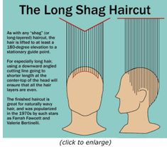 Long-Layered Feathered Shag Hairstyle...very informative hairstyle site - for Kayla