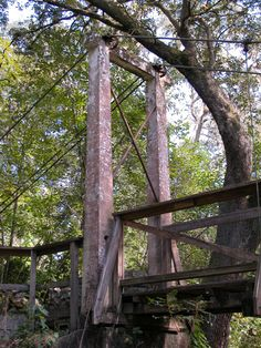 Can just see bridal party pics here - Ravine Gardens State Park - Picture of two large columns connected by cables that hold up the wooden suspension bridge. A Live Oak leans over the bridge providing shade. Other trees fill the background with a hint of a clear blue sky.