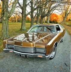1970 Lincoln Continental Coupe The material which I can produce is suitable for…
