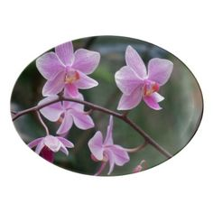#white - #Pink and White Orchids Porcelain Serving Platter
