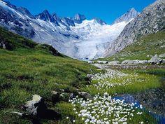グリムゼル湖に向かって流れるウンターアール氷河 - スイス