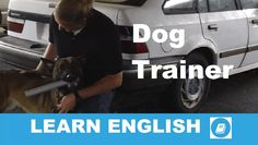 Listen to the text about dog training and then answer the questions. K9 Dog Training, Listening Test, Learn English, This Or That Questions, Learning, Dogs, Learning English, Studying, Pet Dogs