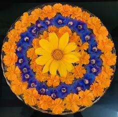 Floating flowers Rangoli Designs Flower, Rangoli Designs Diwali, Flower Rangoli, Beautiful Rangoli Designs, Modern Floral Arrangements, Flower Arrangement Designs, Flower Arrangements, Diwali Decorations, Wedding Decorations