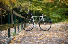Look #fixedgear #pista #fixie #biclycle