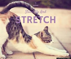 The Little Exercise That Will Make A Big Difference In Your Stress Levels! Stand Up & Stretch