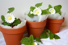 Flowerpot Brownie Cakes....you could also give a packet of seeds to go with the pot