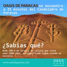 Todo en un solo lugar, Oasis de Paracas el único lugar donde el desierto y mar se unen. Visita nuestra página web y conoce más de este lindo proyecto. http://www.oasisdeparacas.com/