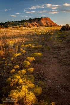Late Evening Light : The Red Hills down in south central Kansas