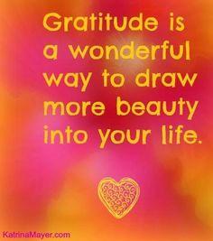 Gratitude ~