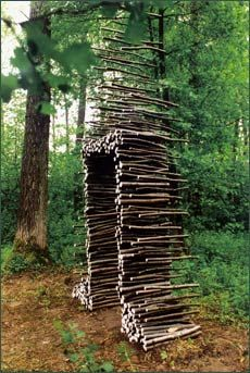 Installation art at the edge of a forest. Made with branches, and wire rope. By Cornelia Konrads.